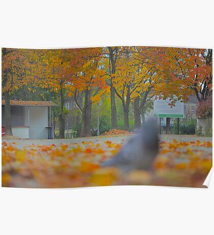 Golden Morning -  Add a touch of sunlight - (CNN News) Fri Oct 15  by Brown Sugar. Views (87) pls... cu18r  !!!  Poster