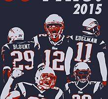 New England Patriots - 2015 by twyland