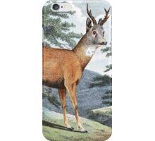 Roebuck Deer Art iPhone Case/Skin