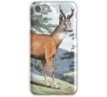 Roebuck Deer Art iPhone Case/Skin