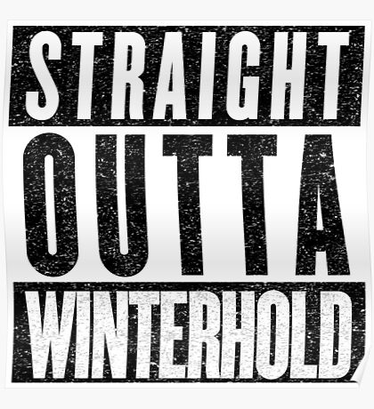 Adventurer with Attitude: Winterhold Poster