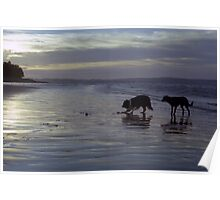 Indy and Shela at Sunset Poster