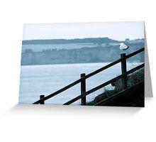 Seagull On Beach Fence Greeting Card