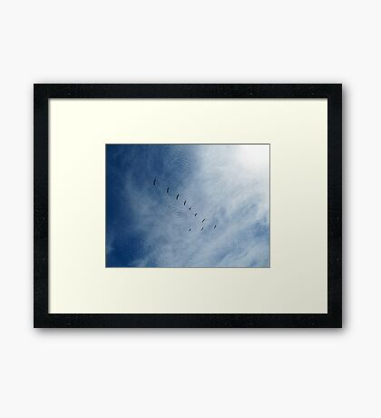 Distant Birds  Framed Print