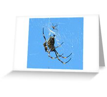 Balfour Spider Greeting Card