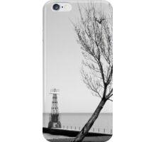 Alone against the Wind iPhone Case/Skin