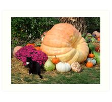 Harvest Display - Longwood Gardens Art Print
