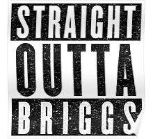 Alchemist with Attitude: Briggs Poster