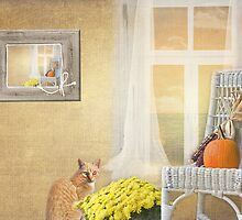 Pumpkin Puss by Maria Dryfhout