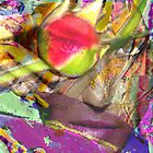 Rose Reaper by Seth  Weaver