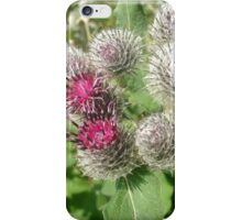 wild and beautiful flowers iPhone Case/Skin