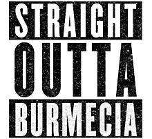 Burmecia Represent! Photographic Print