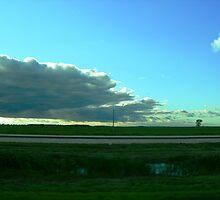 prairie field by Matte Downey