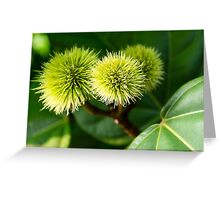 Naturally spikey Greeting Card
