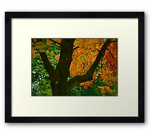 Come away with me autumn . by Brown Sugar. Views ( 94 ) Thanks ! Framed Print