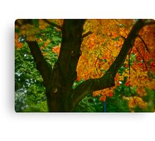 Come away with me autumn . by Brown Sugar. Views ( 94 ) Thanks ! Canvas Print