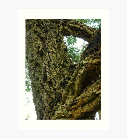 In-tree-guing question? Solved by bubblehex08 ~ Cork Oak tree ~  Art Print
