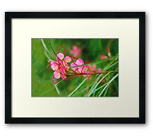 Floral background of grass and red flowers  Framed Print