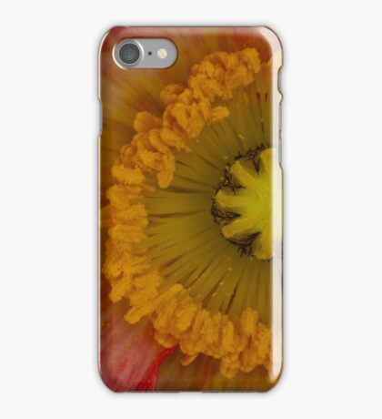 Nature's Spinning Wheel iPhone Case/Skin