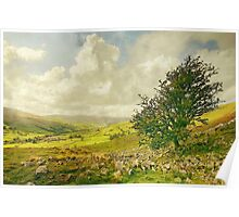 A Yorkshire Dale In Late Summer Poster