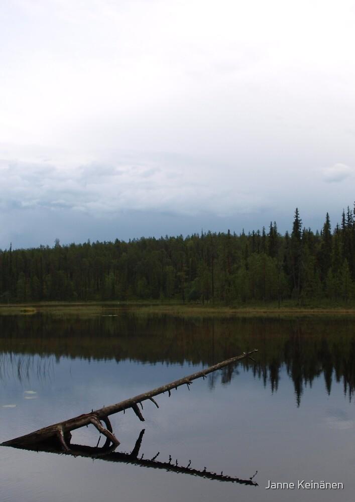 Mirroring by Janne Keinänen
