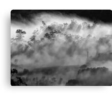 'Morning White-Out' Canvas Print