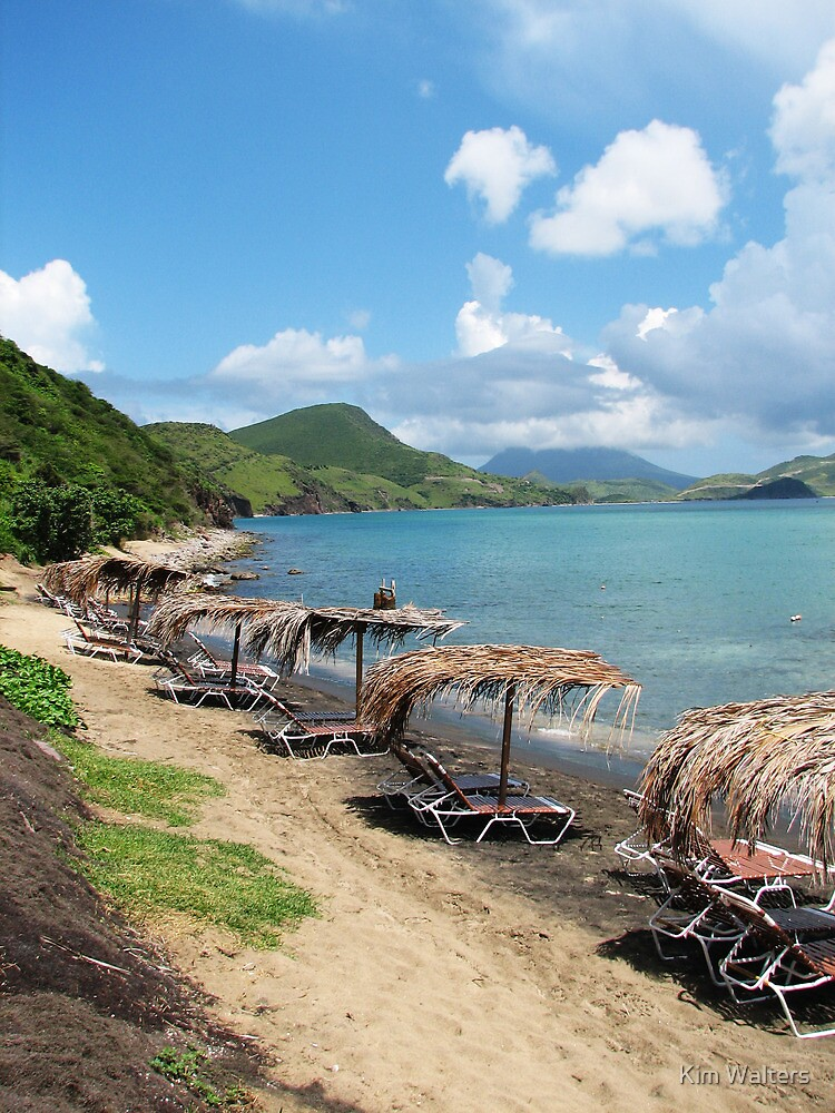 Beach Bar in St. Kitts by Kim Walters