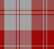 02868 Erskine (Red) Clan/Family Tartan  by Detnecs2013