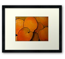 Apricots Framed Print
