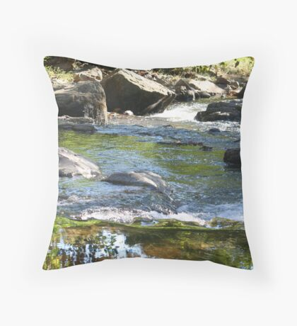 Back Creek Throw Pillow