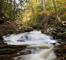 Seneca Falls (Autumn) by Tim Devine
