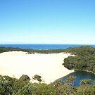 Lake Wabby Panorama - Fraser Island by Richard Cassar