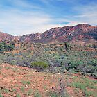Aroona Valley, Flinders Ranges, South Australia by Adrian Paul