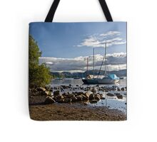 Ullswater from Gale Bay Tote Bag
