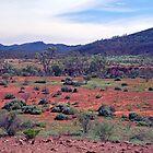 The Aroona Valley, Flinders Ranges, South Australia by Adrian Paul