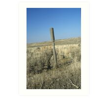 Unique Fence Post Art Print