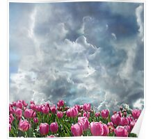 Resubmit of Clouds and Tulips Poster