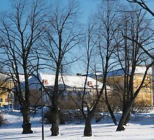 Parks of Oulu by finnarct