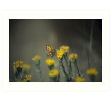 Butterfly And Rabbit Brush Art Print