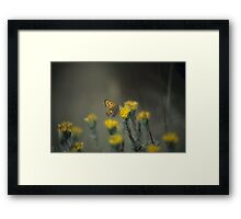 Butterfly And Rabbit Brush Framed Print