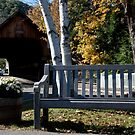 Woodstock Bench by phil decocco