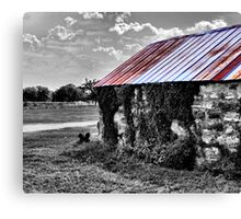 Tin Roof Canvas Print