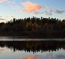 Moods Of Autumn II by CalleHoglund
