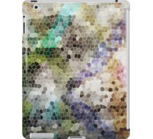 Graffiti Blocks iPad Case/Skin
