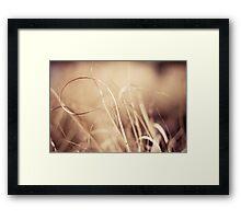 curl Framed Print
