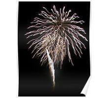 Bright Firework Poster