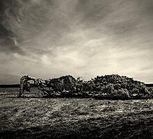 Leaning Tree by Adrianne Yzerman