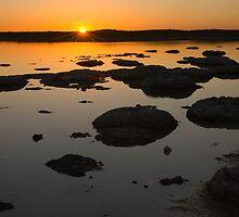 Lake Thetis by Adrianne Yzerman