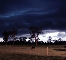 Stalked by Night by SouthBrisStorms