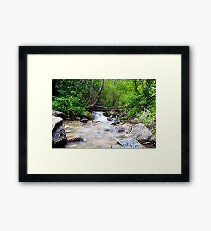 """""""Calmness Among The Water"""" Framed Print"""